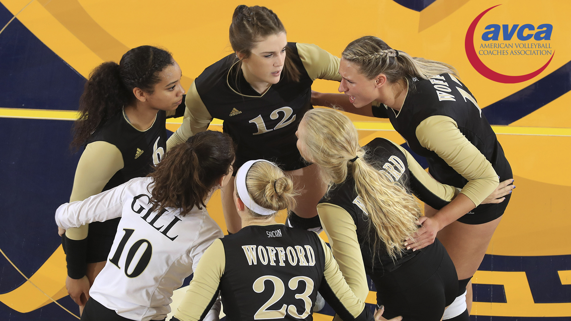 Wofford volleyball receives AVCA Team Academic Award - Wofford